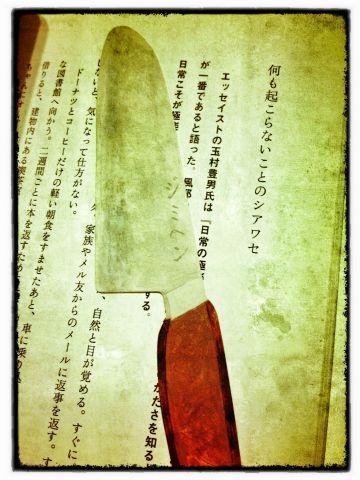 Photo on 2012-03-02 at 13:21.jpg