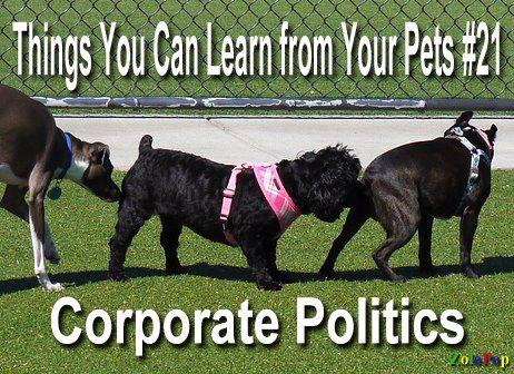 Corporate policies.jpg