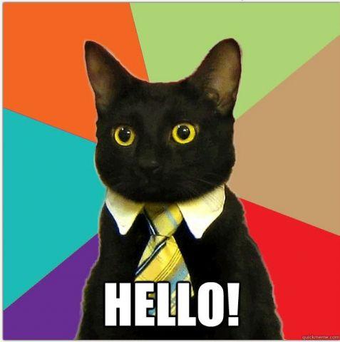 business cat hello.jpg