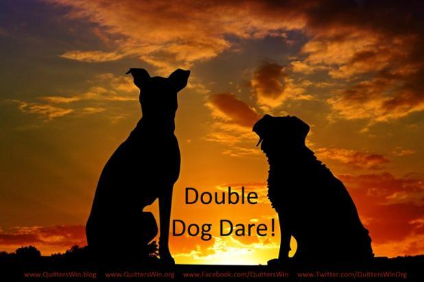 dogs-2222801_1920 - Copy - Copy (1).jpg