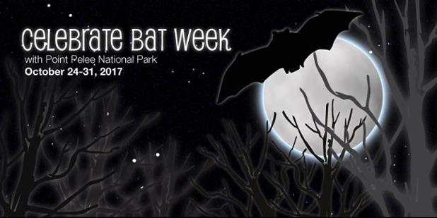 PPNP-bat-week-twitter-english-2017.jpg