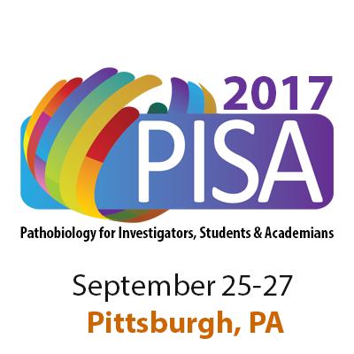 Pisa 2017 profile.png