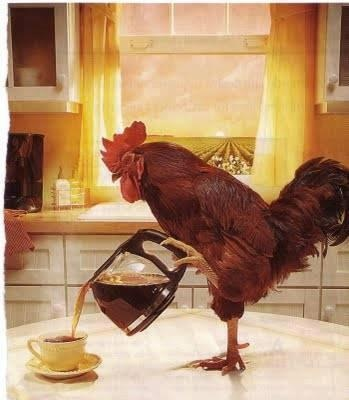 Coffee_Chicken.jpg