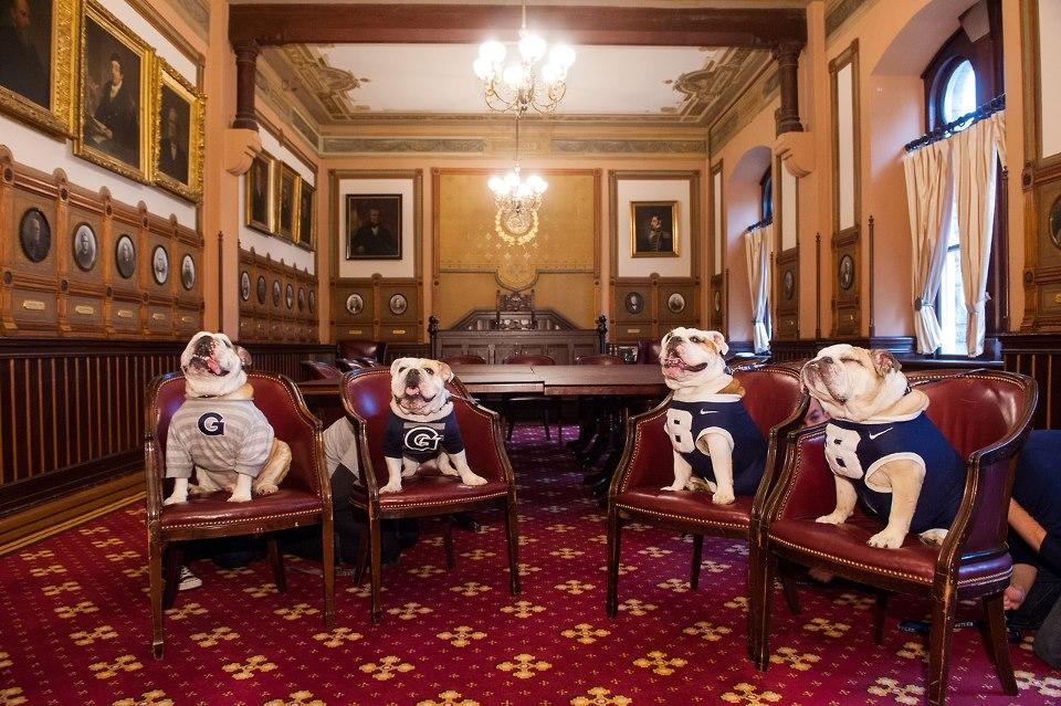 Butler_GeorgetownDogs.jpg