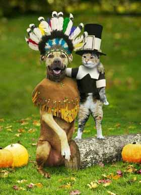Dog and Cat Thanksgiving.jpg