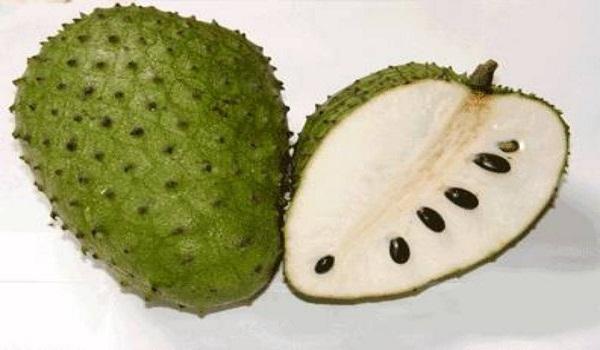 Soursop%20fruits.jpg