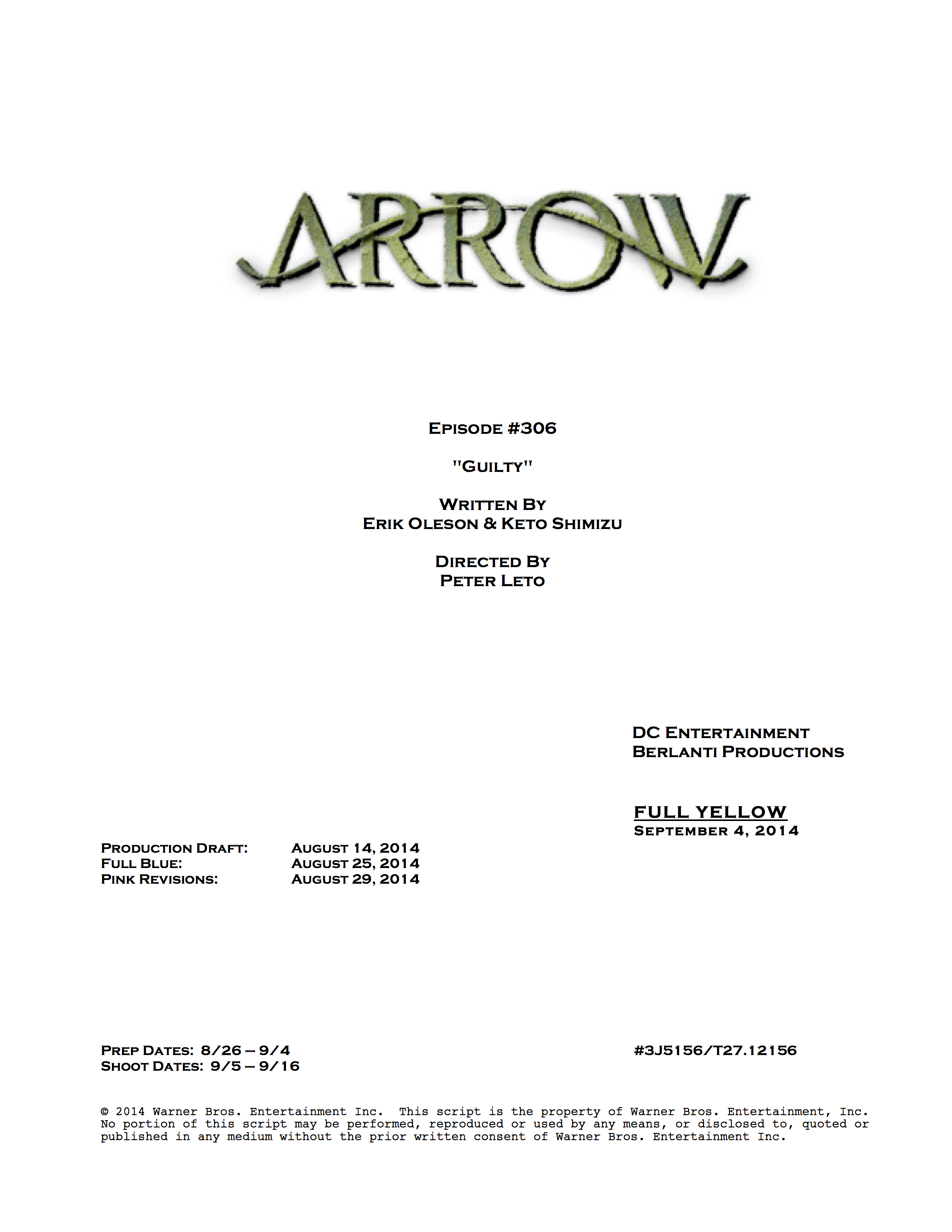 Arrow_306_0904yellow.jpg