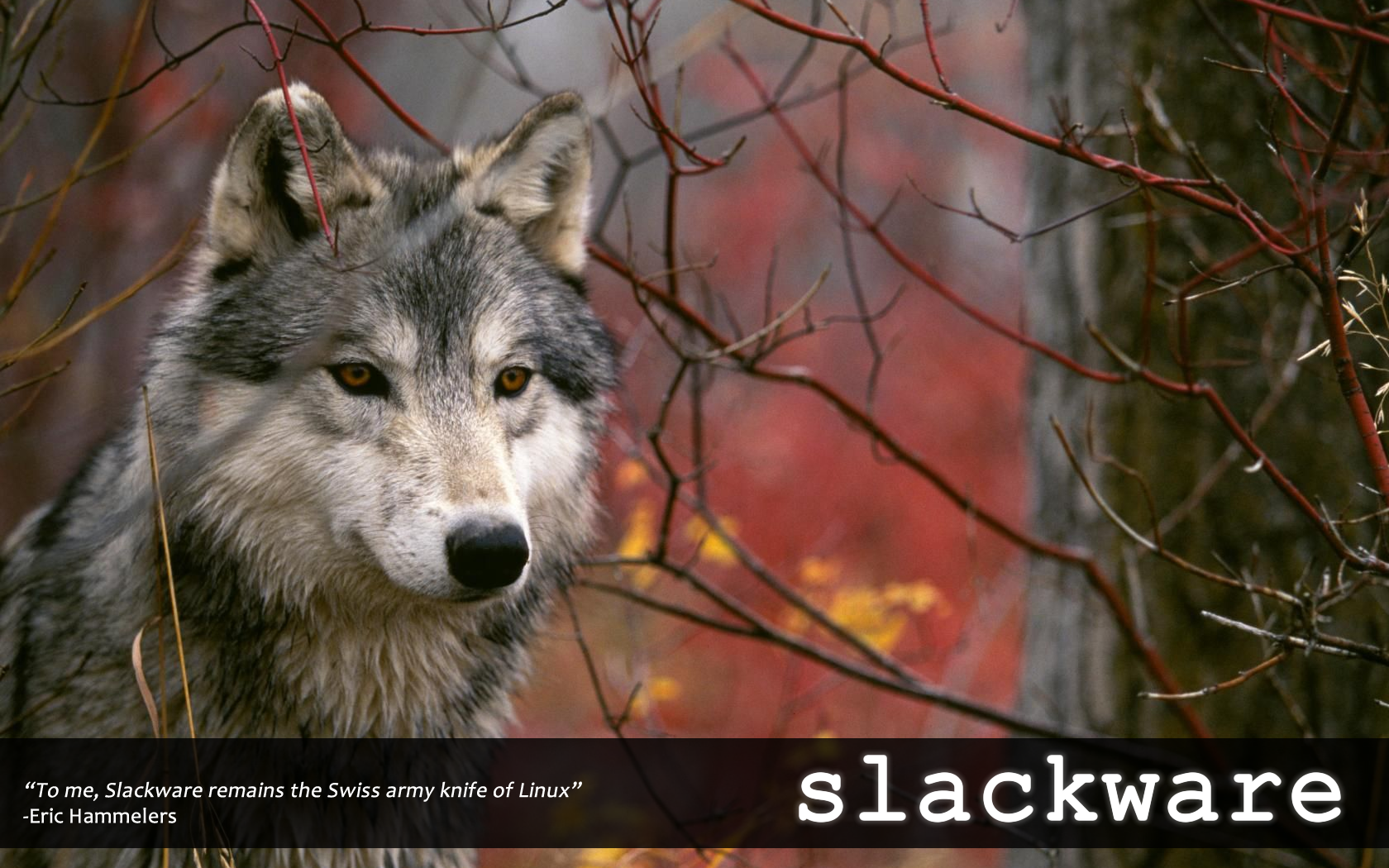 Slackware_Wolfpaper_01.png