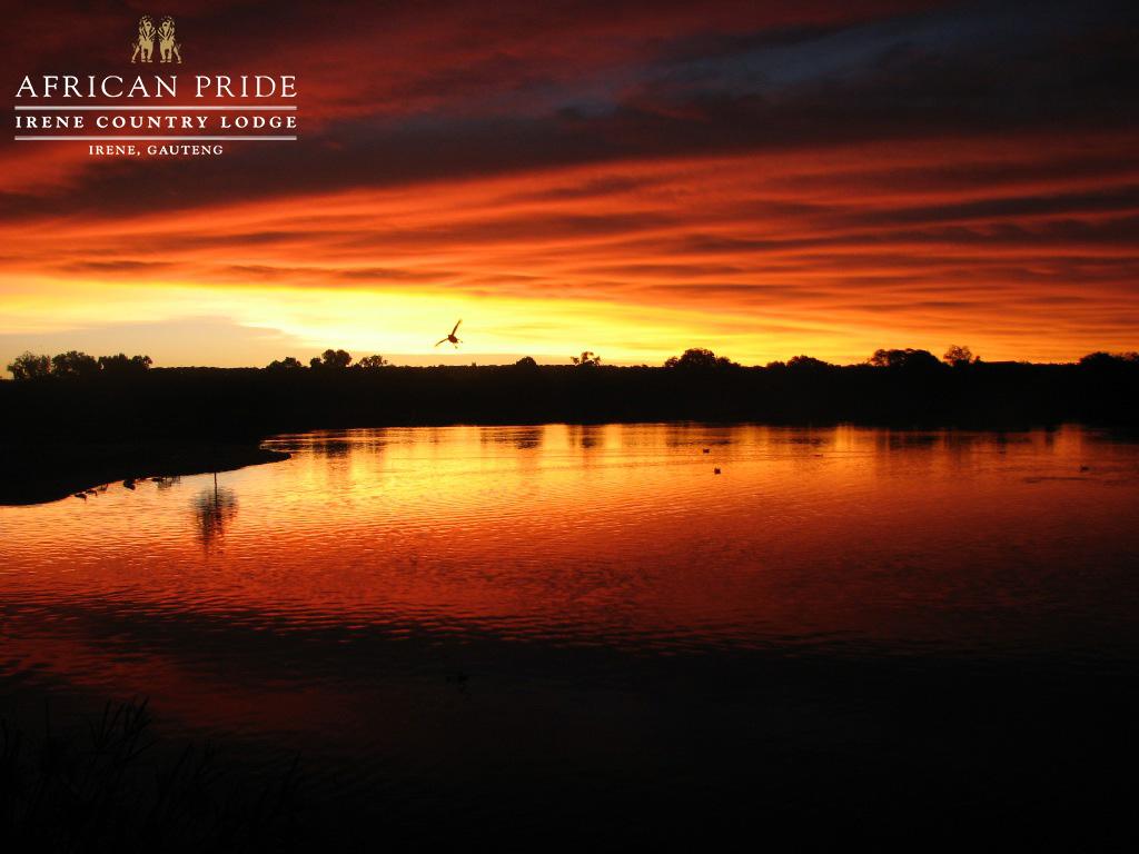 African Pride Irene Country Lodge, sunset lake.jpg