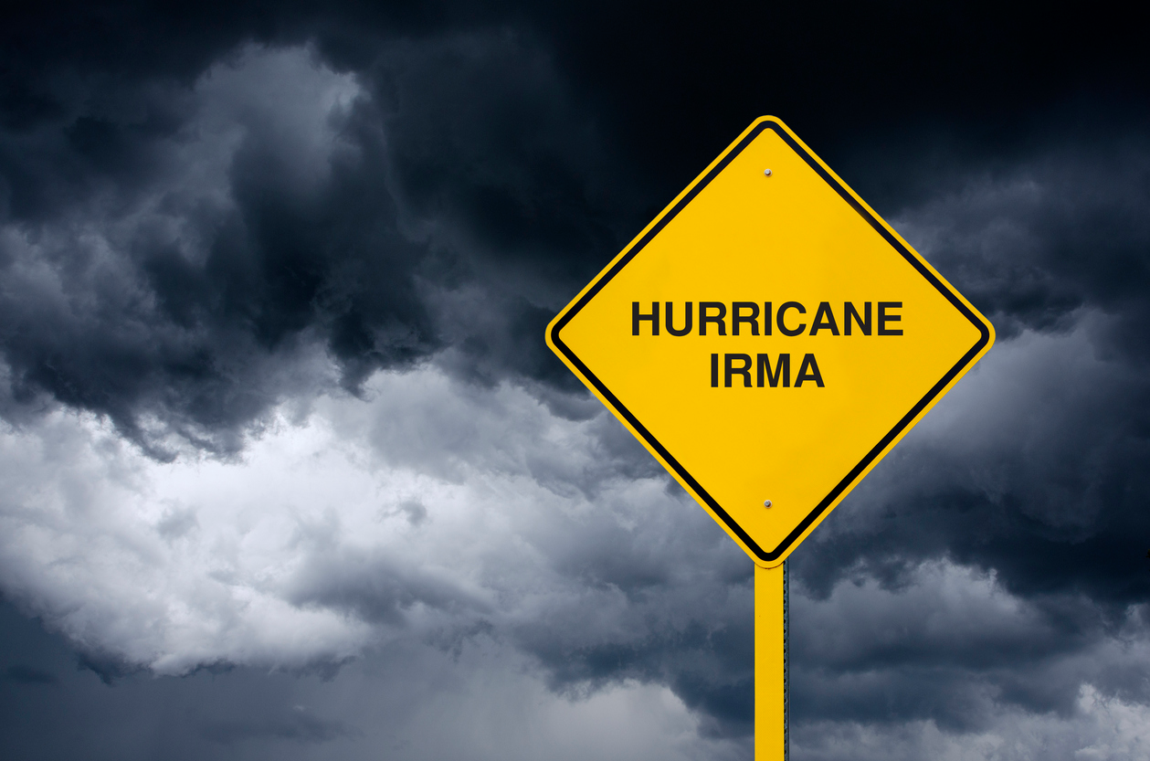 IRMA - Facebook Ad Photo.png