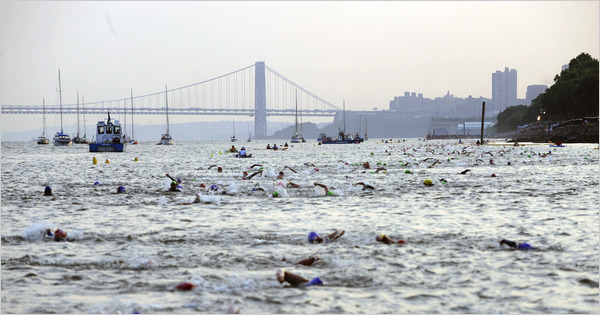 NYT tri photo.jpg