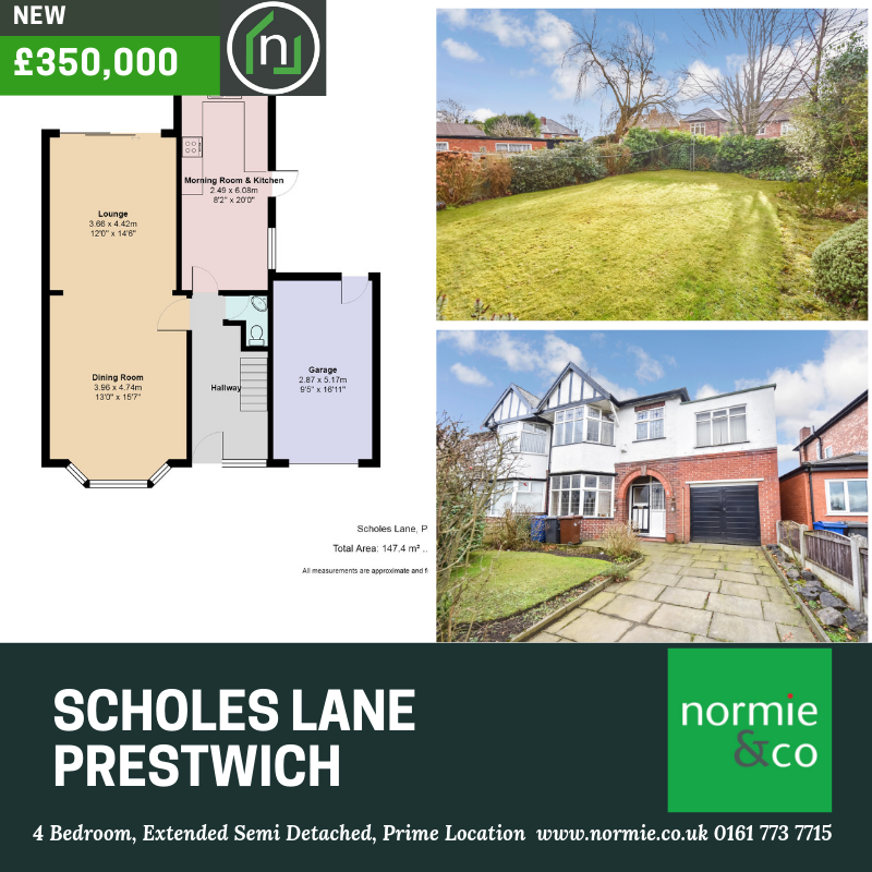 Scholes Lane 2 social.png