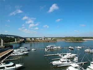 Wharf 524 - view.jpg