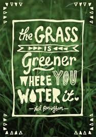 grasswater.jpg