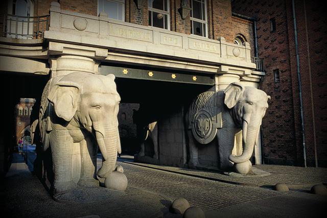 elephantgates.jpg