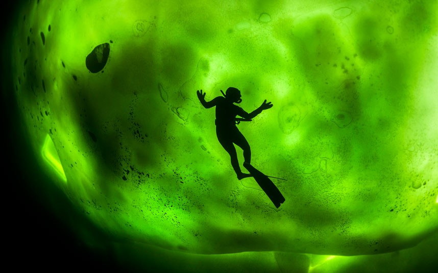 diver-aurora_2342972k.jpg