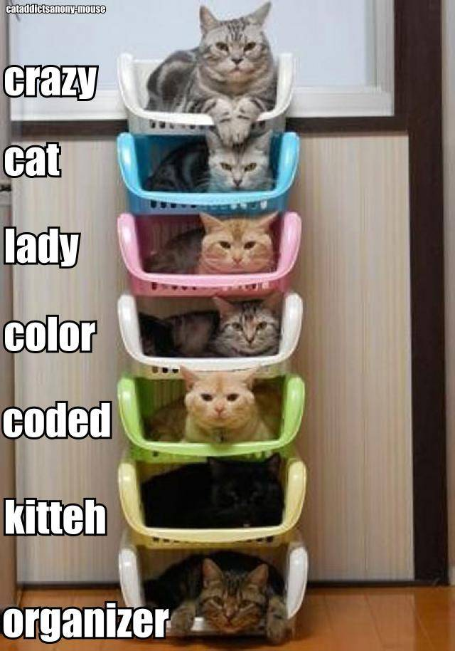 Crazy-cat-lady-color-coded-kitteh-organizer.jpg