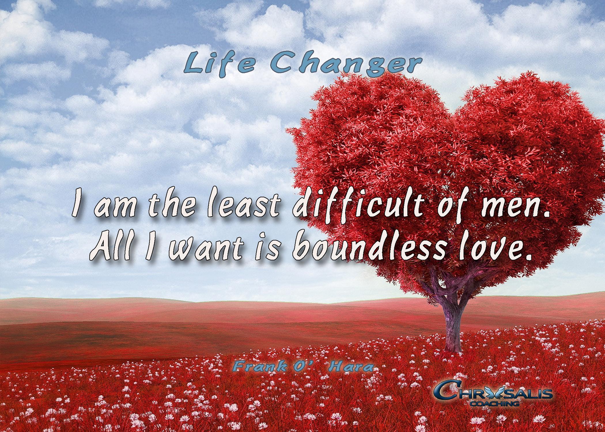 Life Changer Banner 2106 frank ohara.jpg