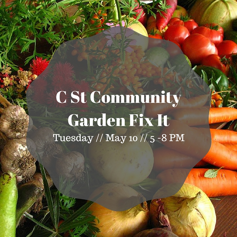 C St Community Garden Fix It.jpg