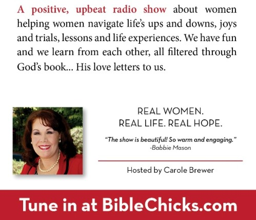 Bible Chicks description.jpg