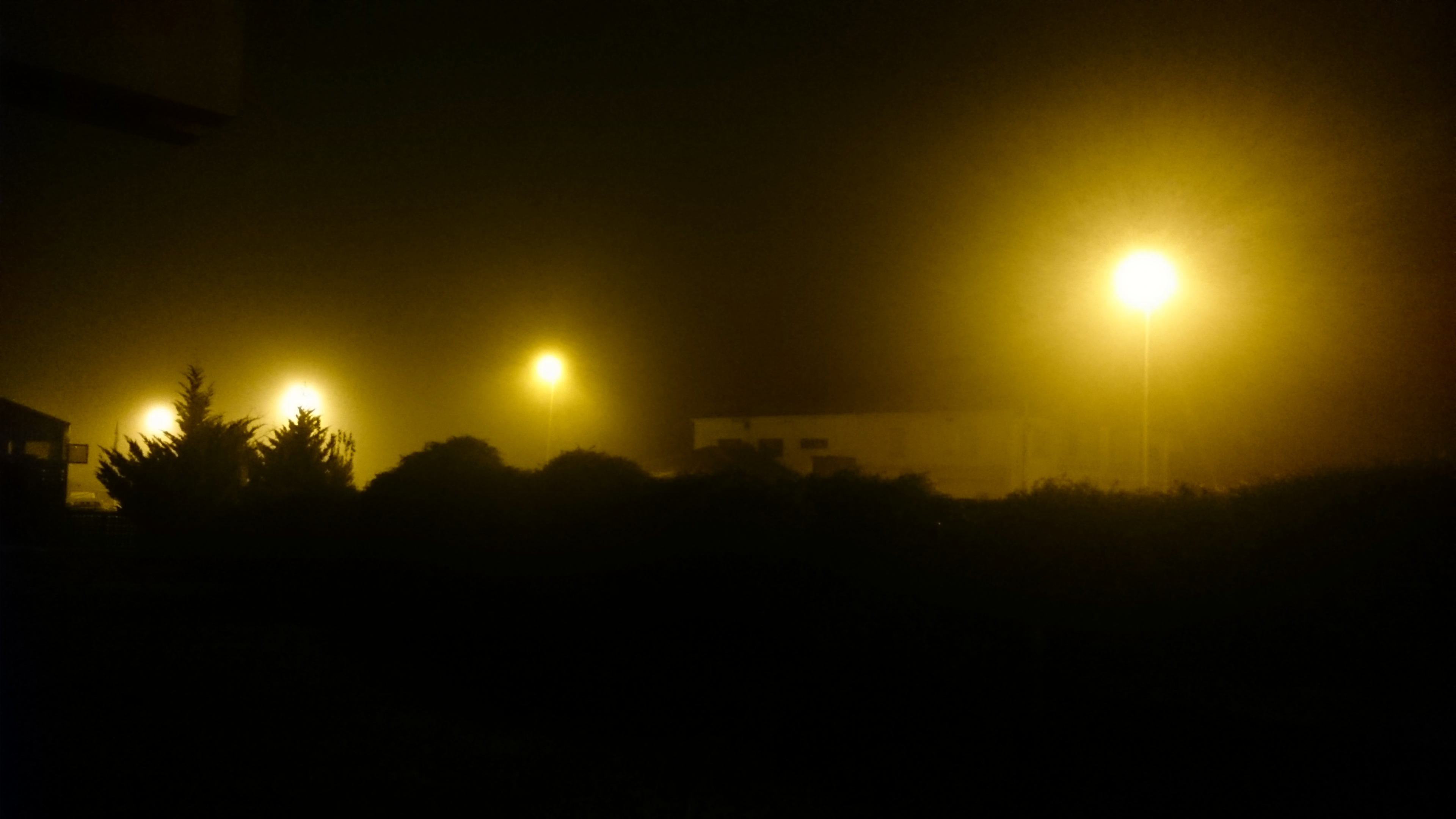 Noche farola luz.JPG