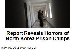 report-reveals-horrors-of-north-korea-prison-camps.jpeg