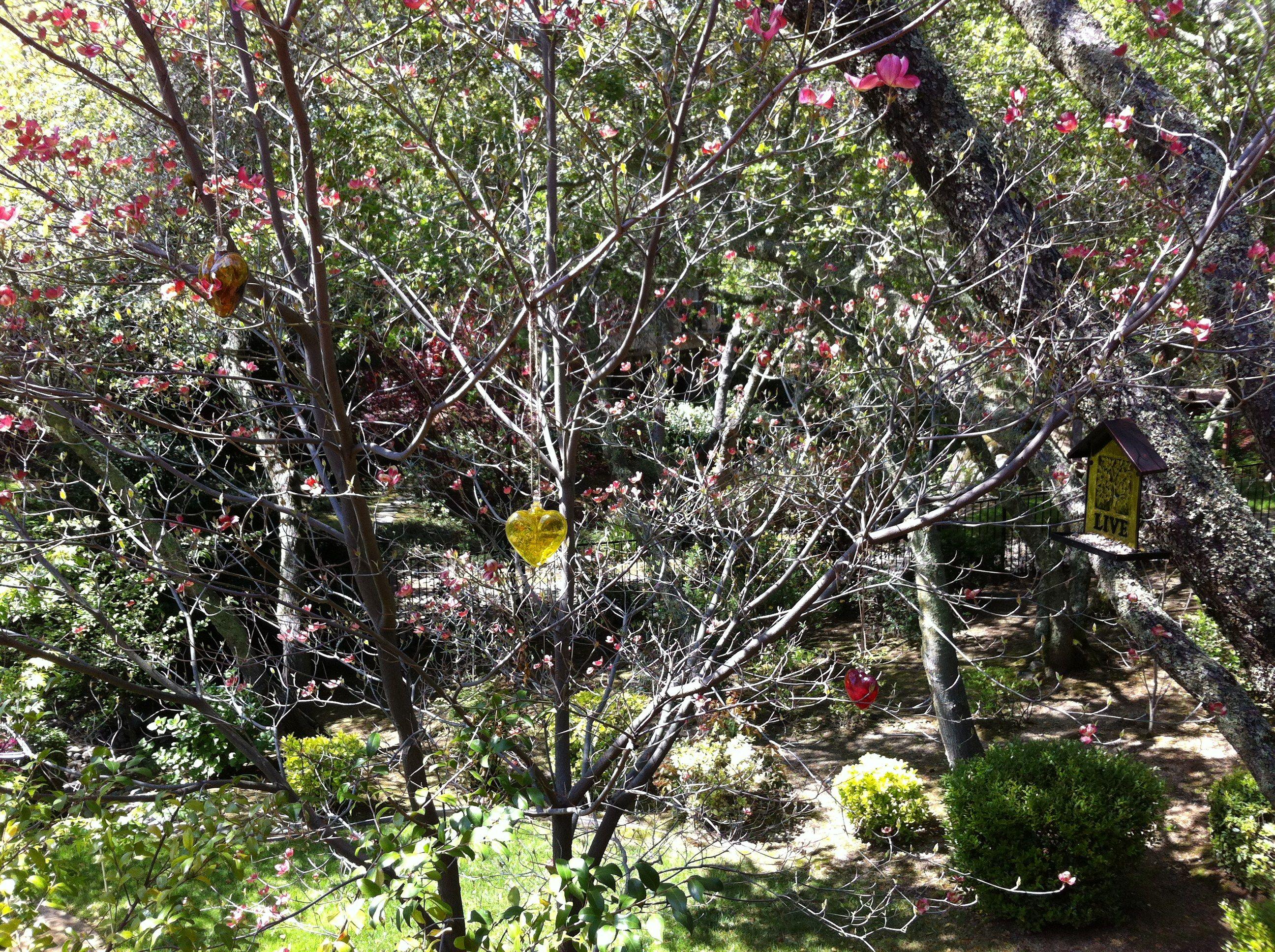 Photo on 2012-04-15 at 12:04.jpg