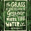 the grass is greener.jpg