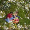 Thumbnail of picknick-in-haspengouw-1-de.jpg