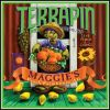 Terrapin-Maggies-Peach-Farmhouse-Ale.jpg