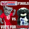 Thumbnail of a photo from user BradleyKaboom called Vote For Kaboom4.jpg