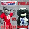 Thumbnail of a photo from user BradleyKaboom called Vote For Kaboom5.jpg