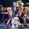 Thumbnail of cats-photo-for-web.jpg